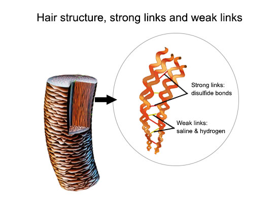 How To Prevent Hair Loss And Breakage Due To Smoothing